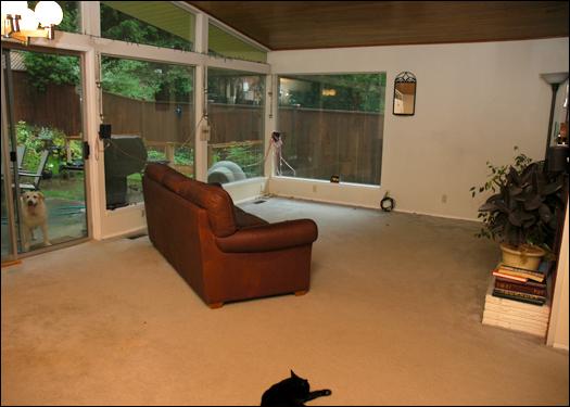 62006_carpet.jpg