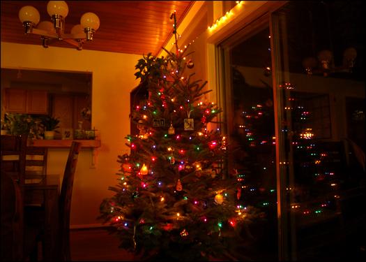 120906_treelights.jpg