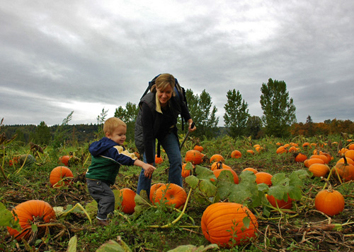 pumpkinsmeboy_07.jpg