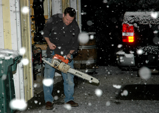 chainsaw308.jpg