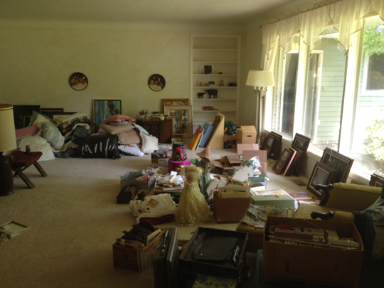 Hey haven't I seen this living room on Hoarders?